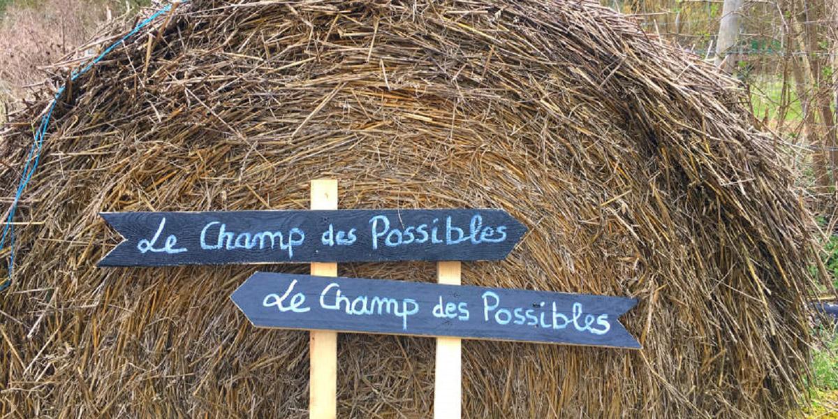 Faire ce que l'on veut de sa vie, photo avec panneau à double sens vers le champ des possibles